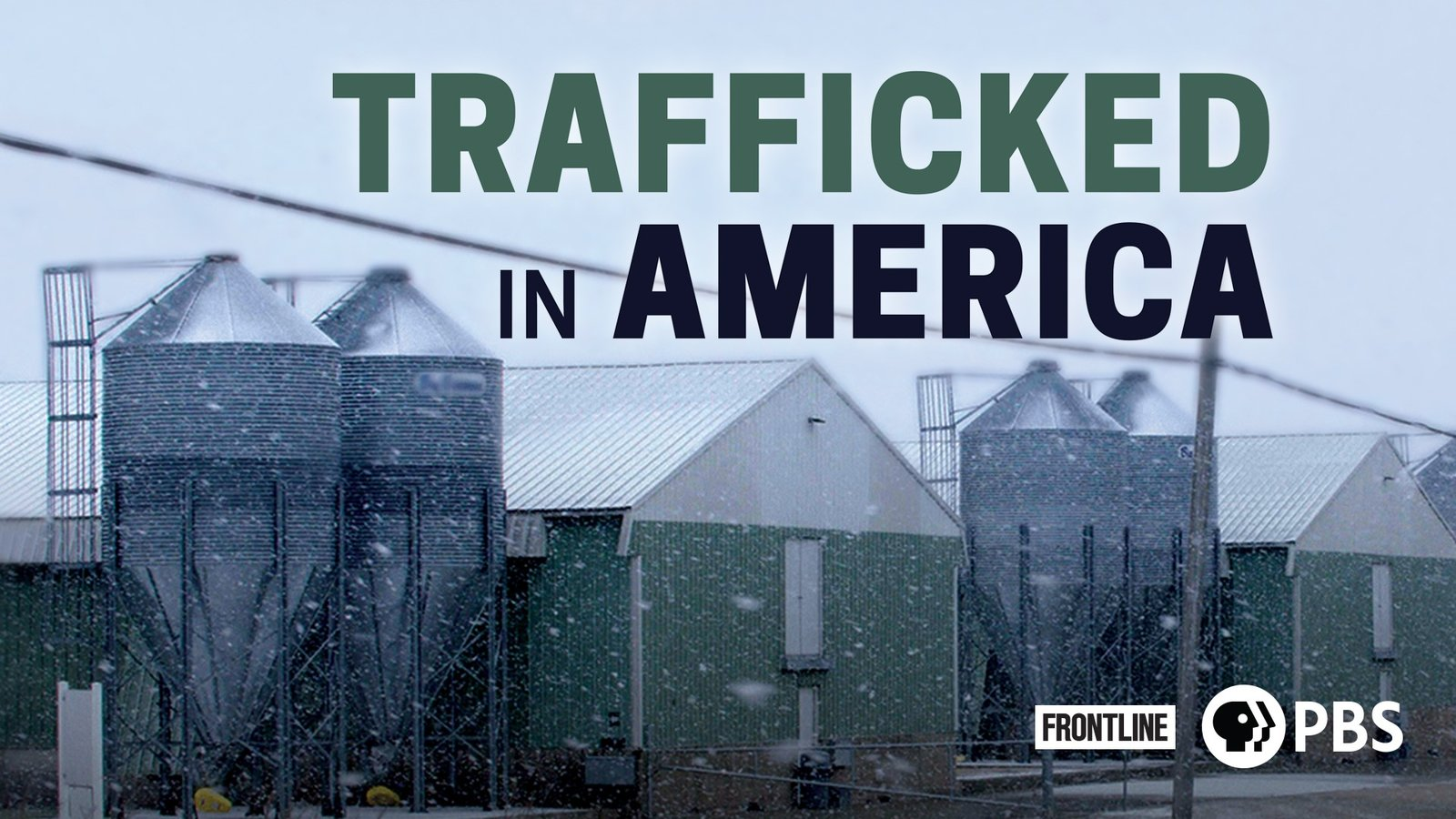 Trafficked in America
